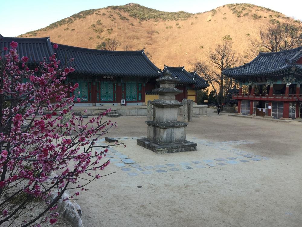 Beomeosa temple south korea butane must see